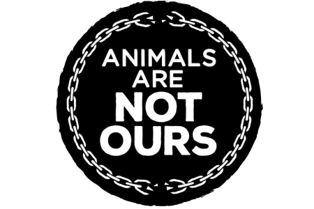 動物保護への取り組み