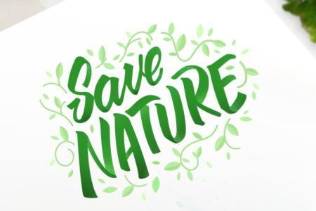 環境保護への取り組み