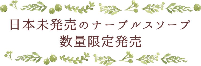 ナーブルスソープ 数量限定発売