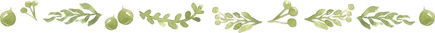 ナーブルスソープ - パレスチナのヴァージンオリーブオイル 無添加 オーガニック 保湿 石鹸