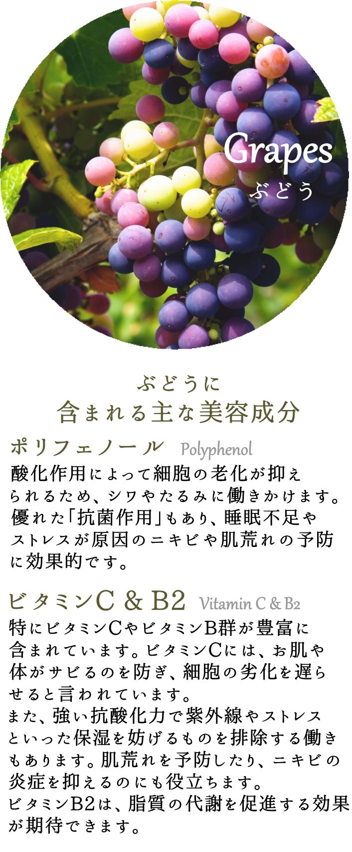 image-grapes5