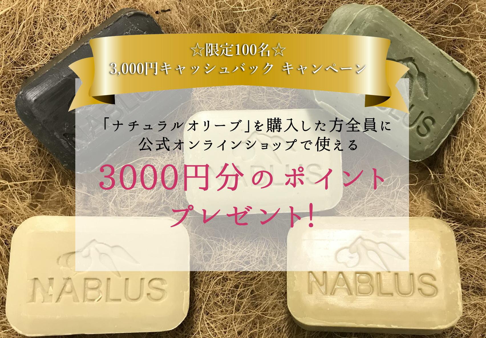 image-lp3000
